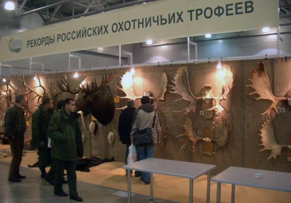 На выставке охотничьих трофеев