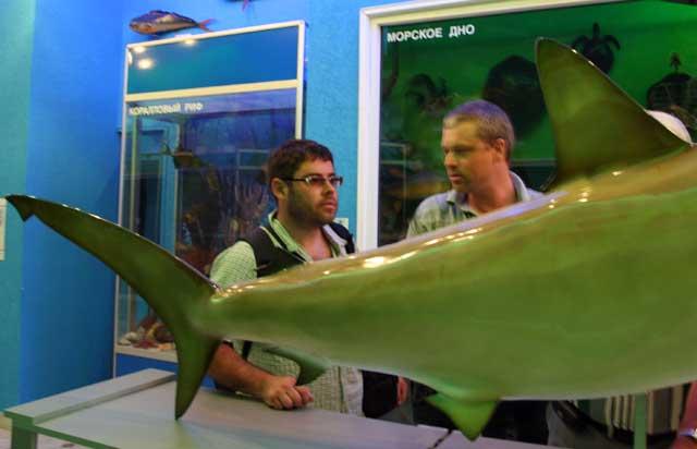 Акула в руках доцентов