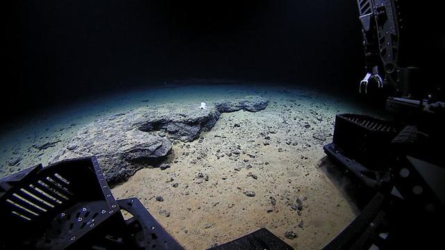 Вид с камеры Deep Discoverer. Фото NOAA
