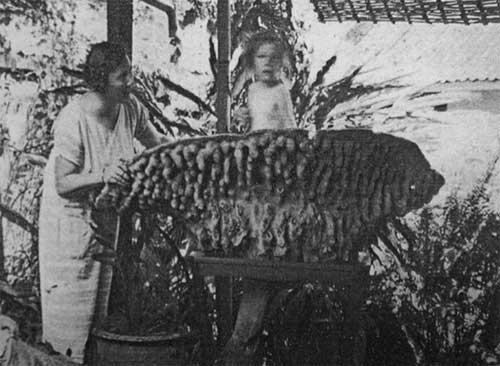 Использование кубка Нептуна в качестве детской ванночки. Фото 1925 года