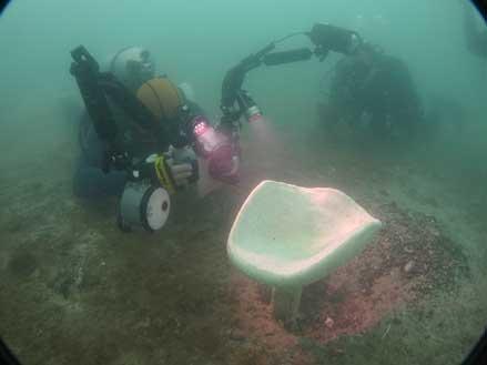 Один из обнаруженных недавно экземпляров кубка Нептуна. Фото DHI Water & Environment