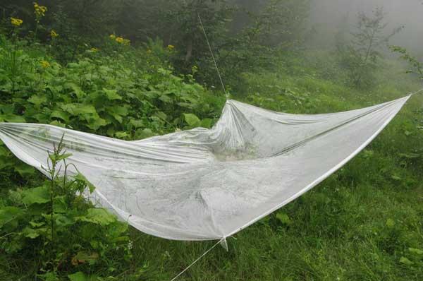 Растянутый между деревьями полиэтилен позволяет конденсировать воду из тумана.