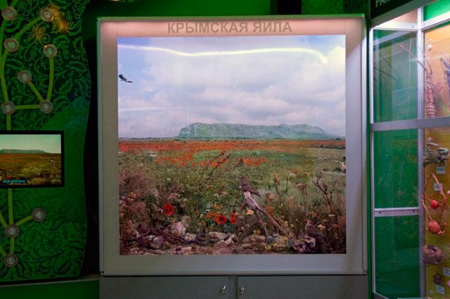 Крымская яйла