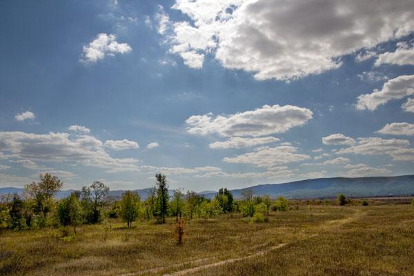 Вид на территорию Сафари-парка
