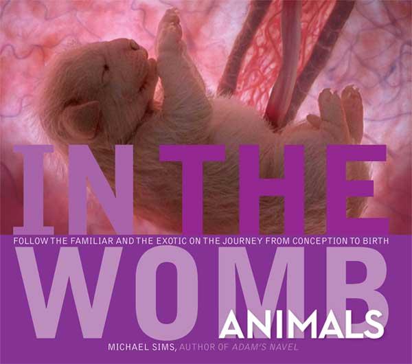 В утробе матери: животные